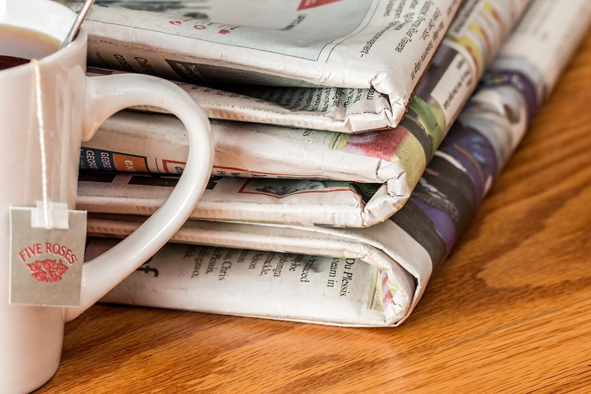 FON Zeitungsartikel - Presse