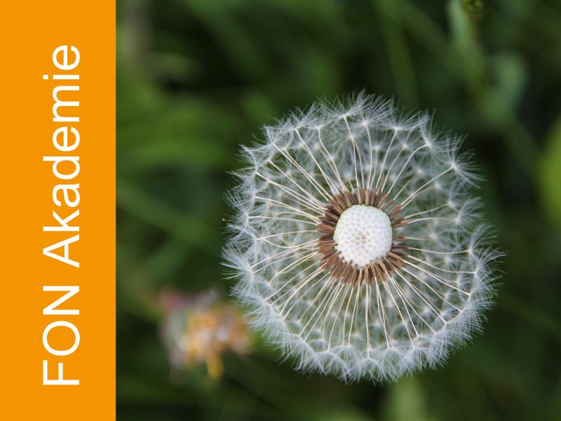 P6 Workshop Atmung – Mehr Energie und Ruhe
